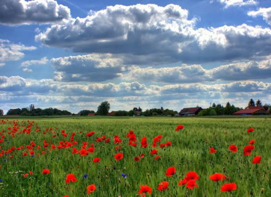 smukke-vandreture-i-graenseregionen-2021-september